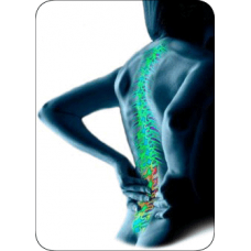 AROGYAM-PURE-HERBS-KIT-FOR-JOINT-PAINS